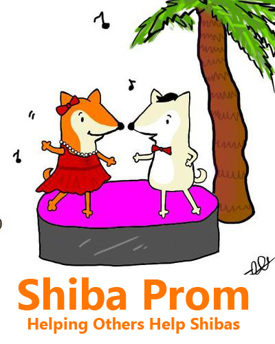 shiba inu shelter resource shiba prom