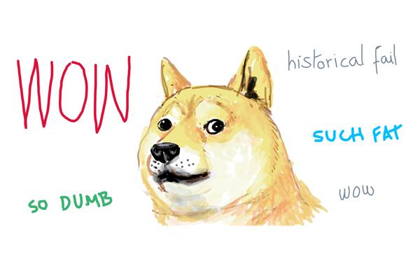 Shiba Inu Meme What Is A Doge Exactly My First Shiba Inu