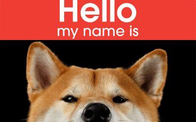 Shiba Inu Dog Names