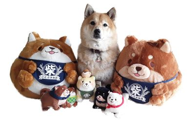 Shiba Inu Plush Toys