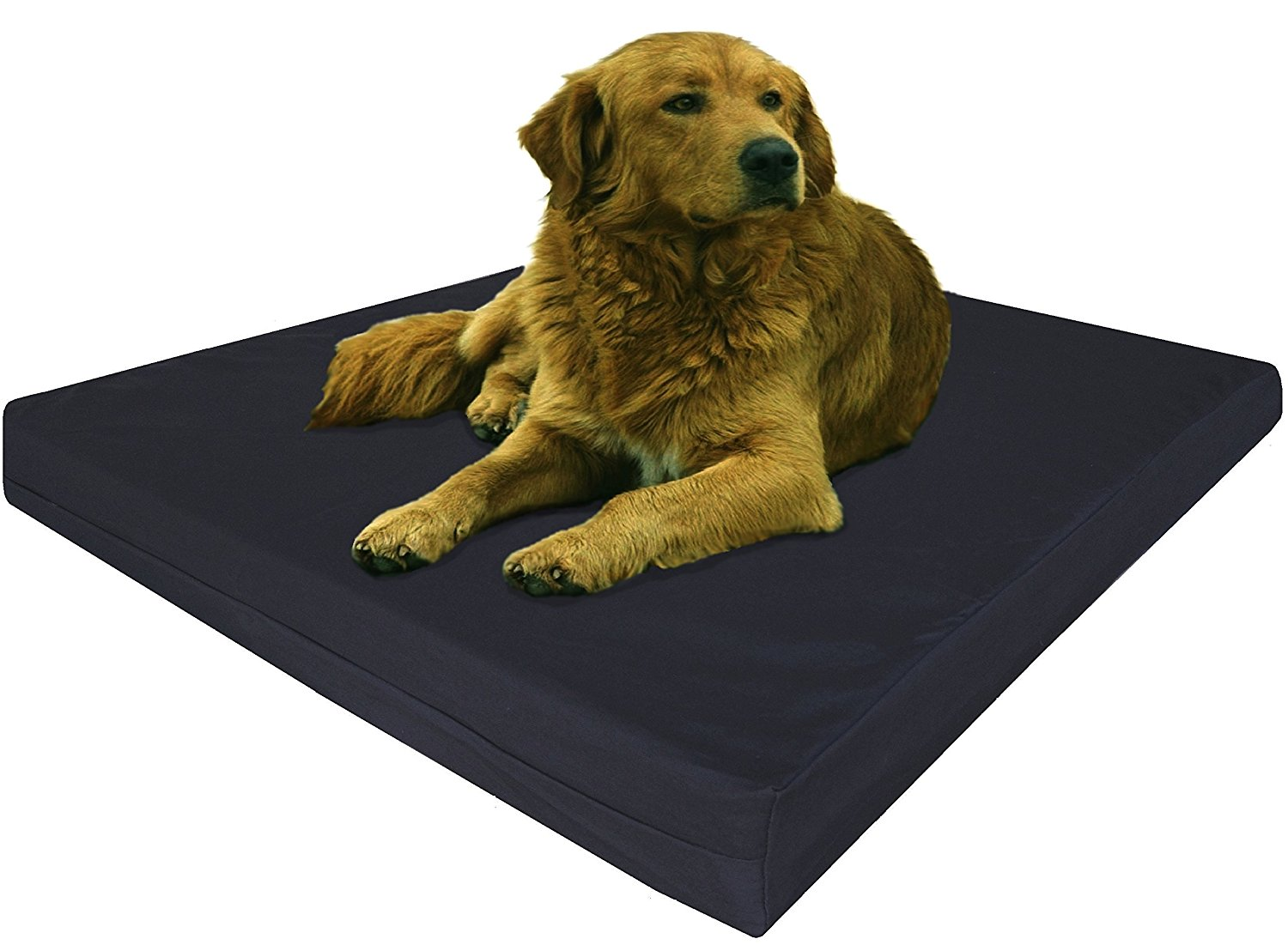 orthopedic outdoor dog bed