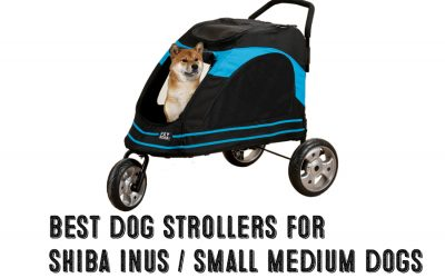Best Dog Strollers For Shiba Inus / Medium Dogs