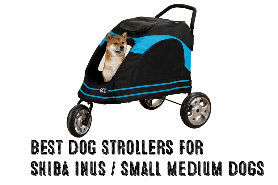 Best Dog Strollers For Shiba Inus / Medium Dogs