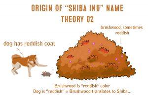cartoon shiba inu origins