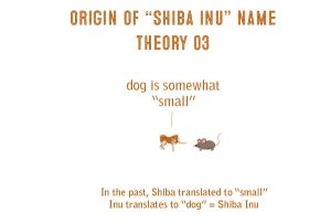 cartoon shiba inu origin of name