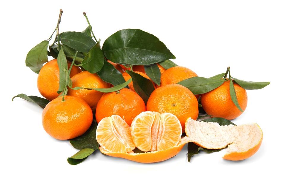 Can I Feed My Dog Oranges