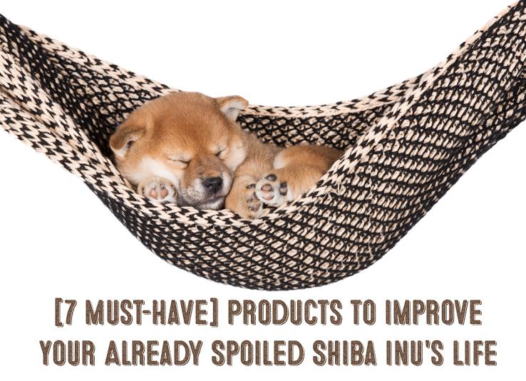 spoiled shiba inu products