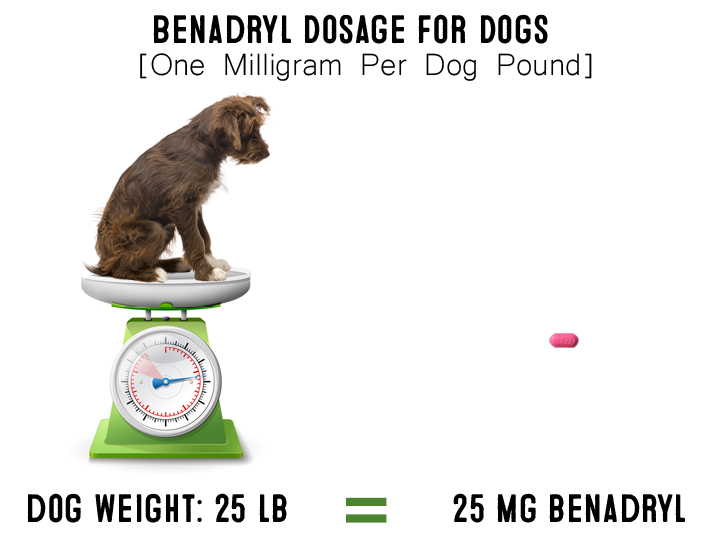 Benadryl For Dogs What Are The Uses Is Benadryl Safe For Dogs