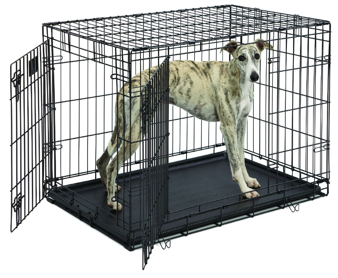 wire dog crate medium size