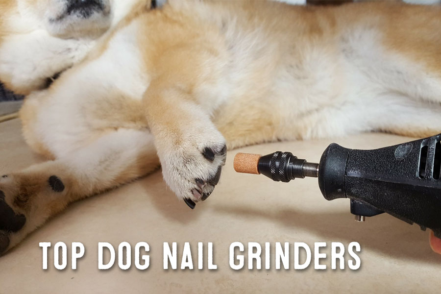 best dog nail grinders review