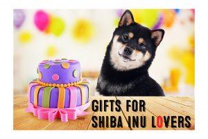 shiba inu gifts image birthday