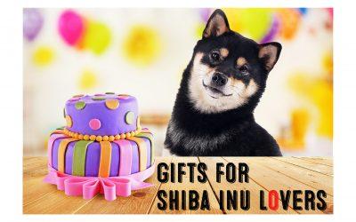 Shiba Inu Gifts For Crazy Shiba Inu Lovers