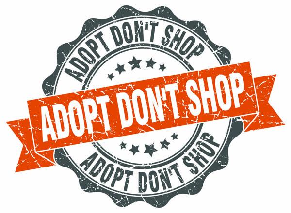 adopt don't shop sign