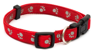 standard red dog collar with buckle and clip