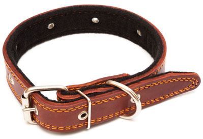 brown leather dog collar on white background
