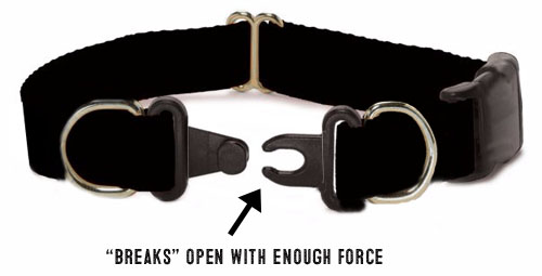 breakaway dog collar