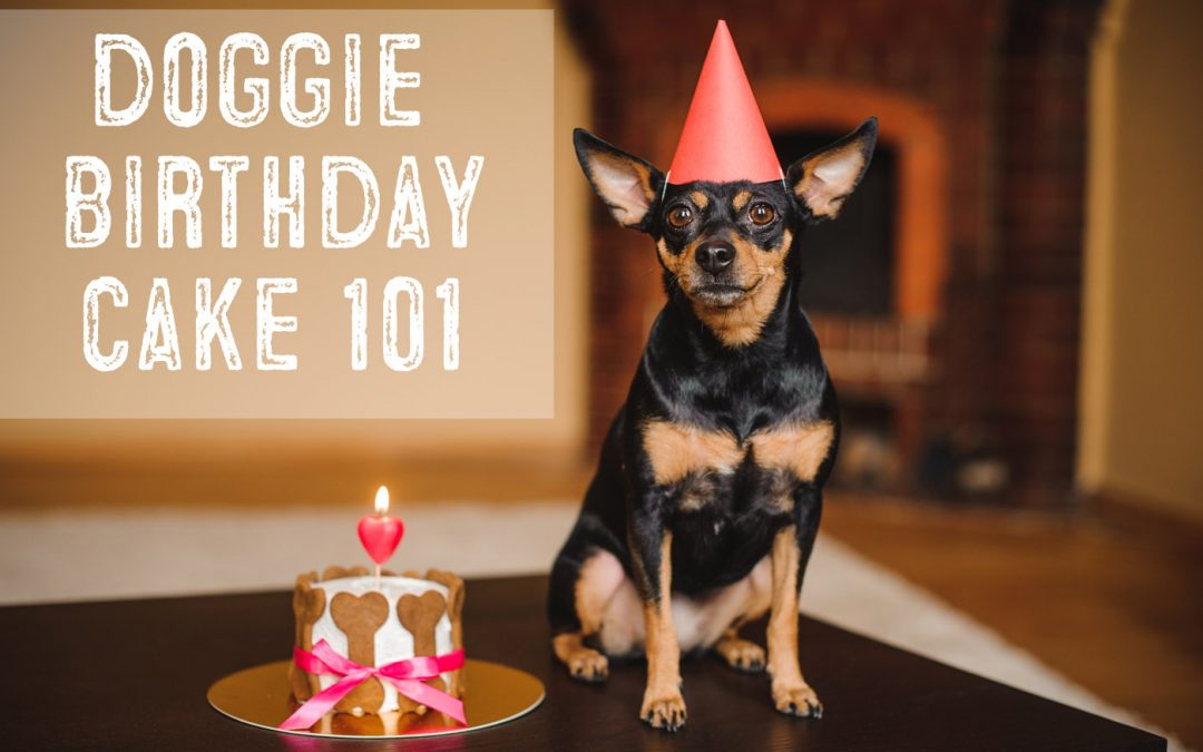 Dog Birthday Cake 101 – Easy Recipes For Dog Cakes and Pupcakes