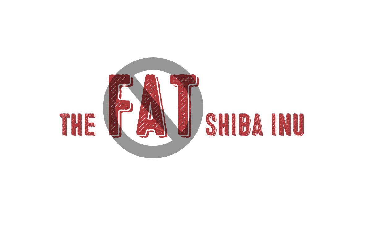 the fat shiba inu graphic