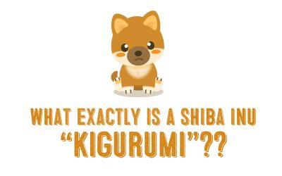What Exactly Is A Shiba Inu Kigurumi a.k.a Shiba Inu Hoodie?
