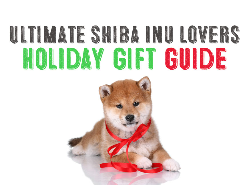 Ultimate Shiba Inu Lovers Gift Giving Guide
