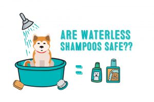 are waterless dog shampoo safe