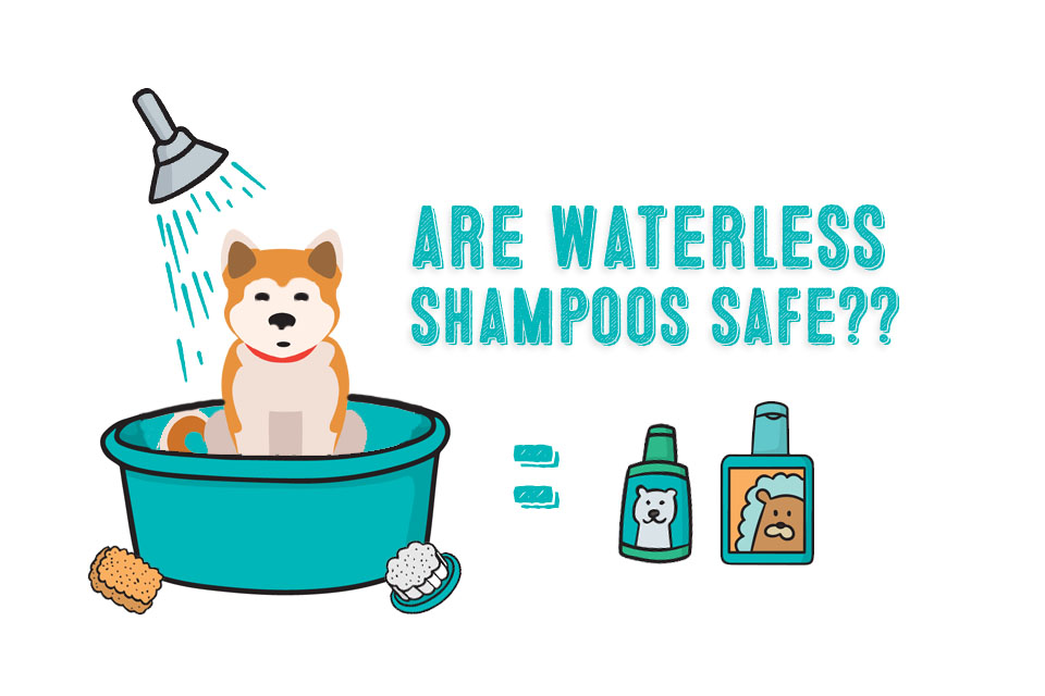Waterless Dog Shampoos – Are They Safe?