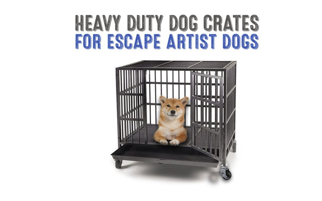 Best Heavy Duty Dog Crates for Escape Artist Dogs