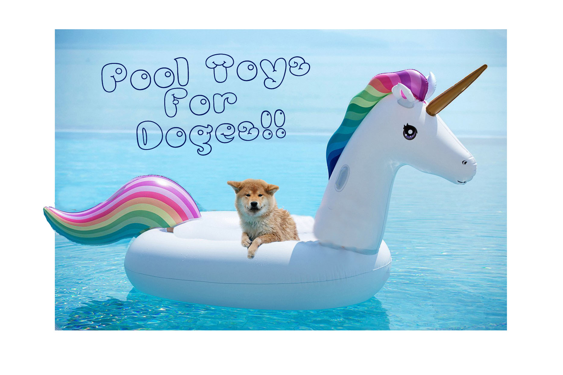 best water toys for doges