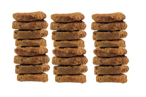 FREEZE Dried raw dog food patties