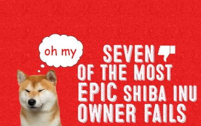 7 Epic Mistakes Shiba Inu Owners Make