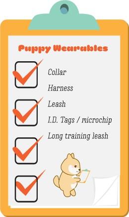 shiba inu puppy shopping checklist