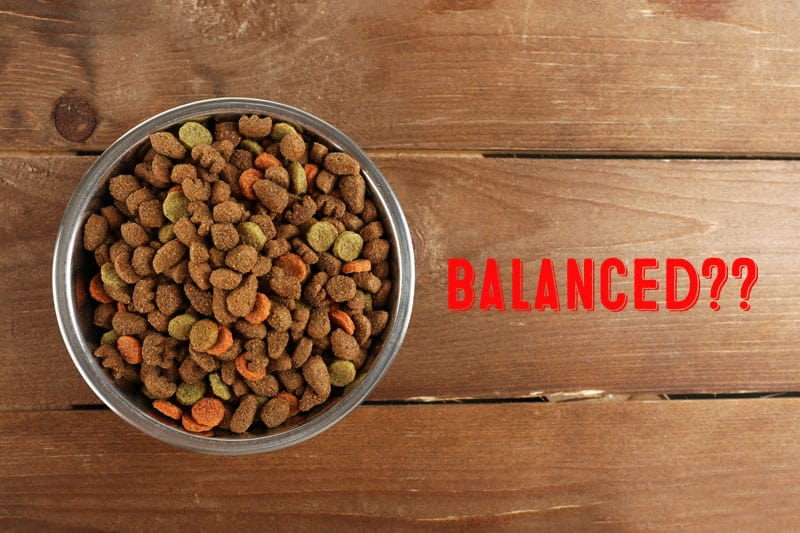 is kibble for dogs really balanced?