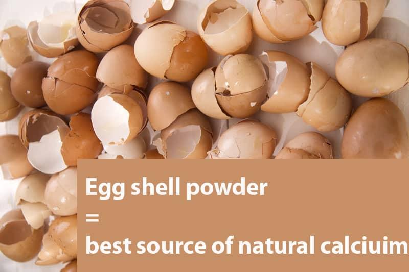 egg shell powder calcium for homemade diets