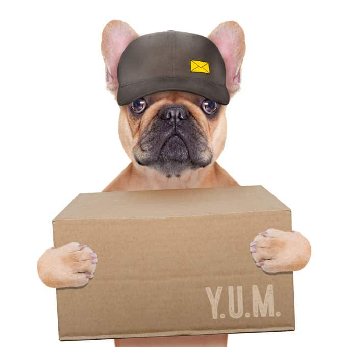 ups dog delivery