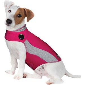 thundershirt on dog