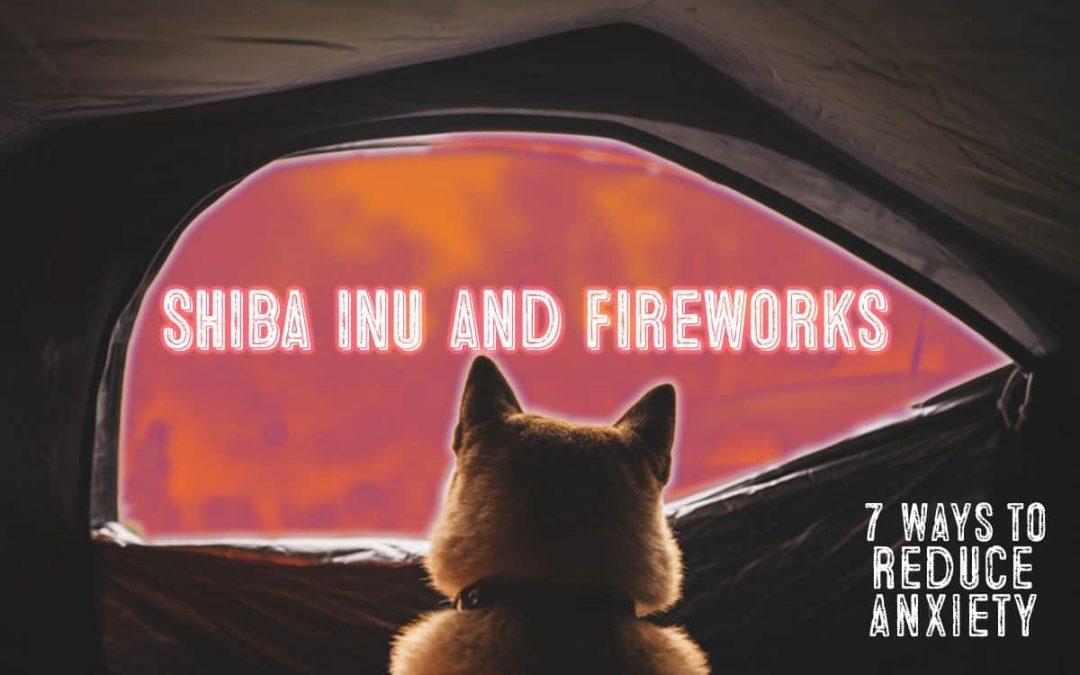shiba inu scared of fireworks tips
