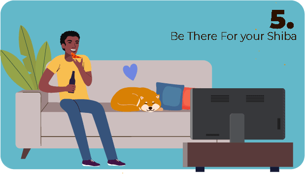 being there for your shiba inu