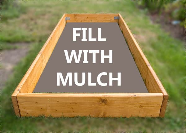 dog litter box mulch porch