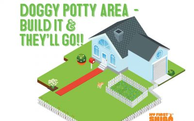 Dog Potty Area – Build It and They'll Go!