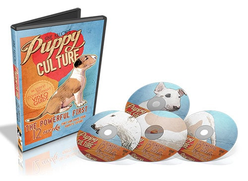 puppy culture dvds