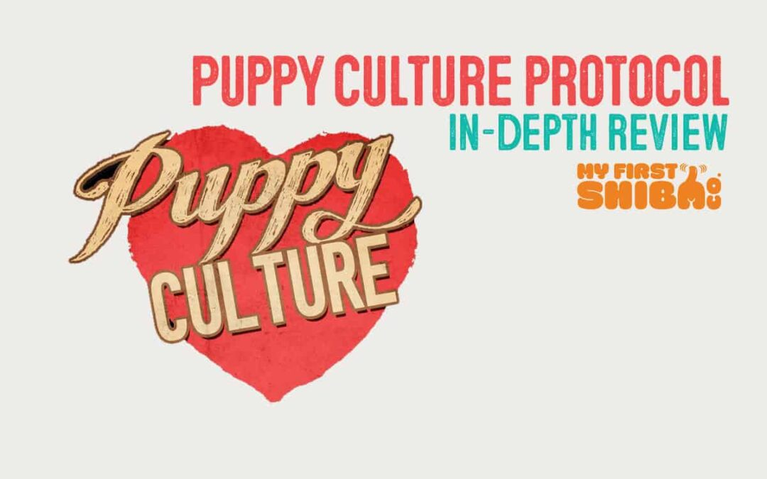 puppy culture protocol review