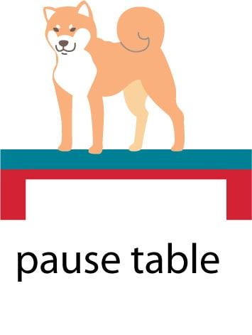 shiba inu on pause table illustration