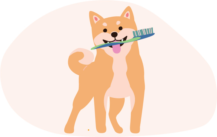shiba inu brush teeth illustration