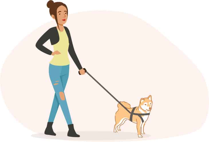woman walking shiba inu dog illustration