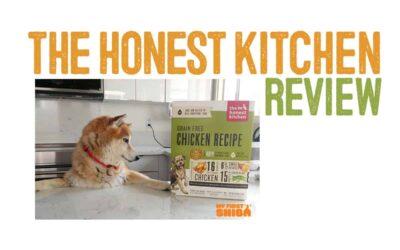 Honest Kitchen Dog Food Review
