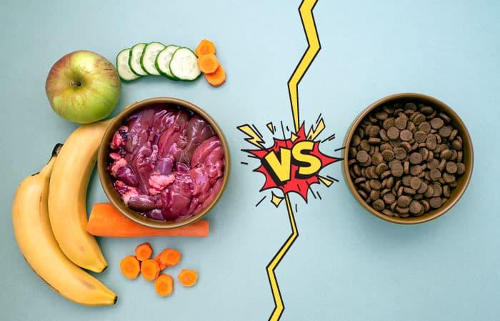 fresh dog food vs processed kibble