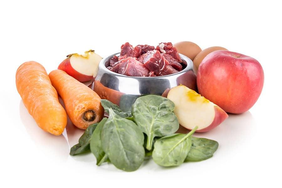 fresh raw and healthy dog food