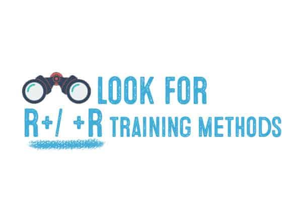 r plus training methods for dog non - aversive
