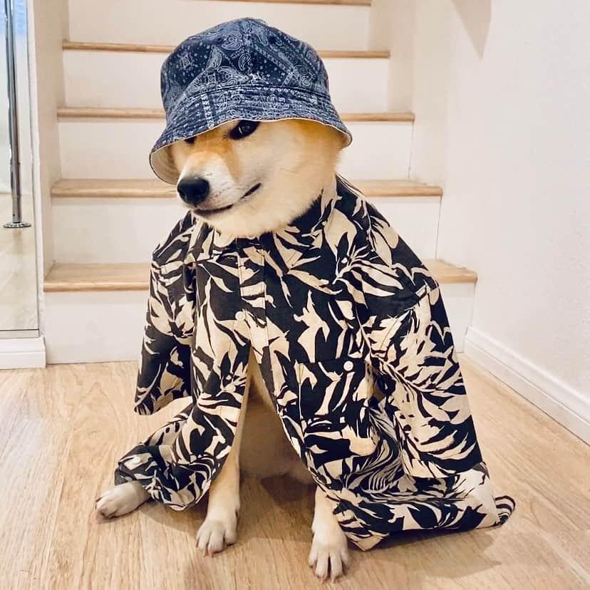 ryo wearing stylish thread