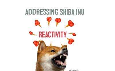 Addressing a Reactive Shiba Inu